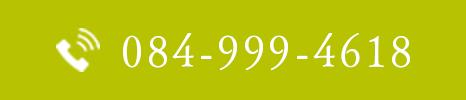 0849994618